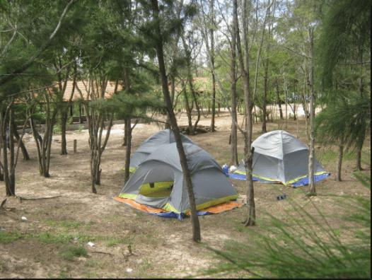 Cắm trại ở cạnh biển rất thú vị