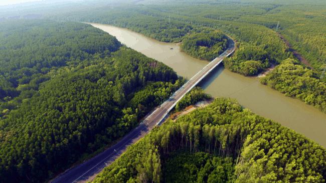 Con đường rừng Sác nối Cần Giờ với thành phố Hồ Chí Minh