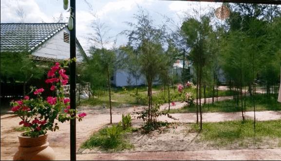 Sân vườn của Gió Biển Resort