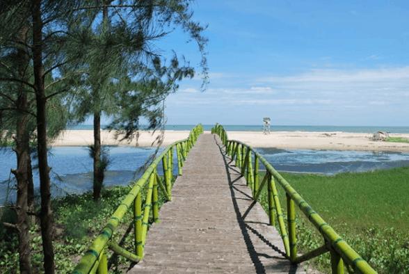 Cây cầu đi ra bãi biển của resort