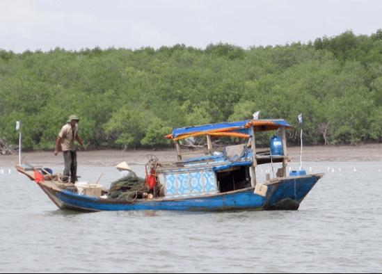 Theo người dân làng chài đi đánh bắt hải sản là một hoạt động rất thú vị