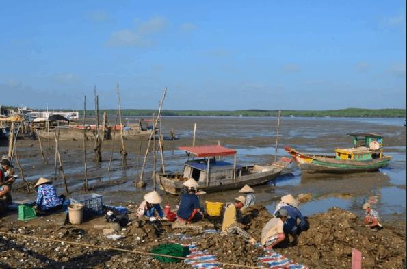 Cuộc sống hàng ngày của người dân trên đảo