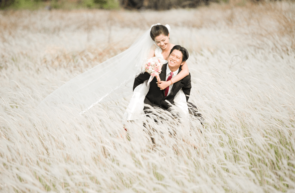 Field of reeds - Ideal wedding photography location