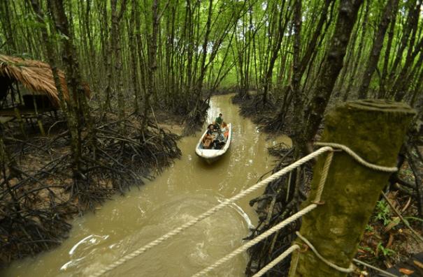 Du khách sẽ được di thuyền để thăm quan rừng Sác