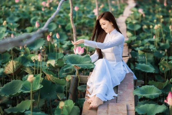 ảnh cô gái ngồi trên cây cầu gỗ tai đầm sen Tam Đa