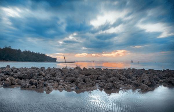 Hình ảnh biển Cần Giờ