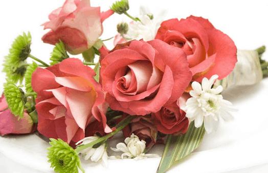 Hoa hồng là loại hoa được nhiều người chọn mua trong các dịp lễ