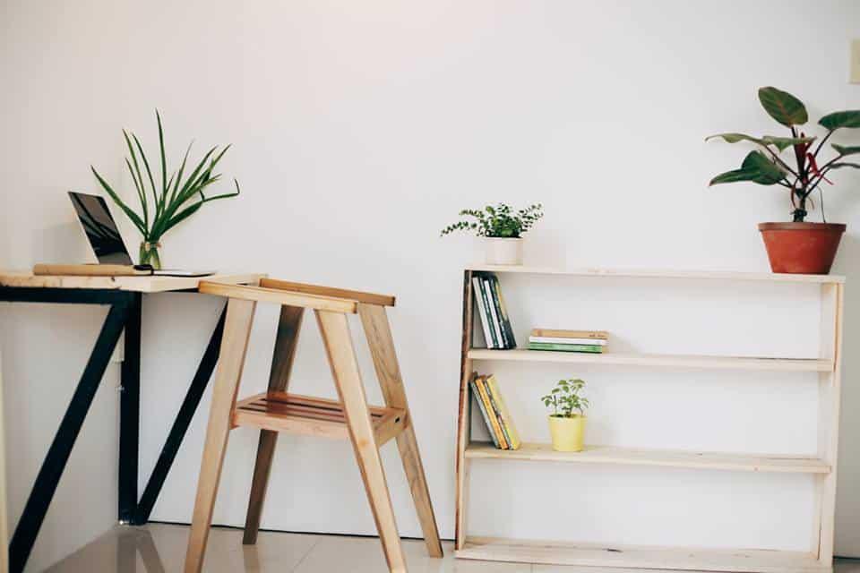Gía sách bằng gỗ và những chậu cây bé xinh (Ảnh: ST)