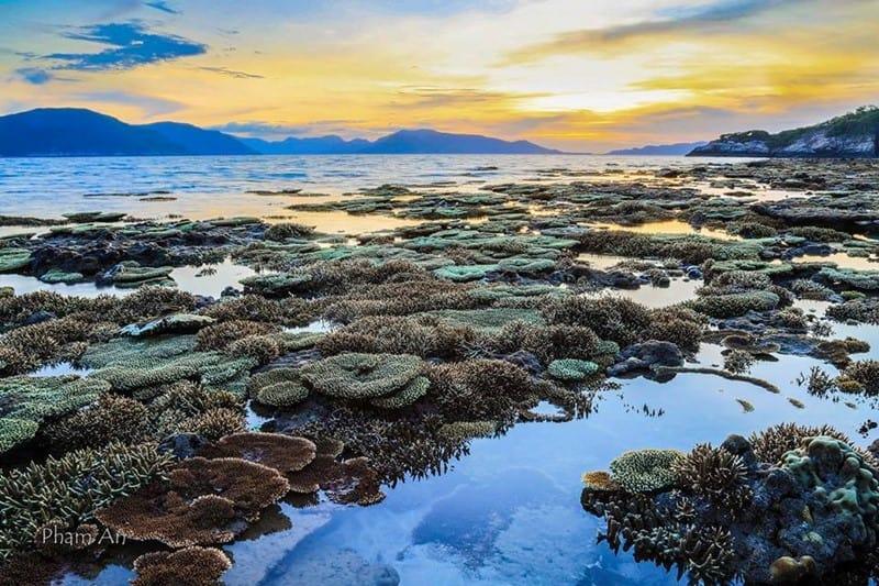 Nét đẹp thiên nhiên nổi bật nhất của Hòn Cau