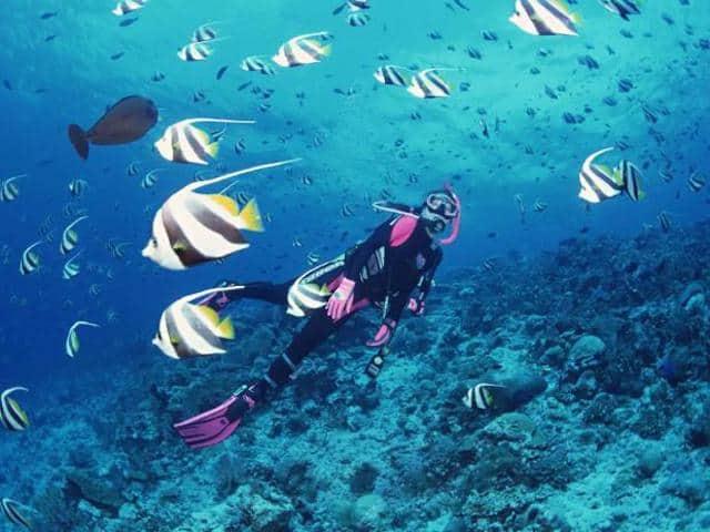 Dắt túi ngay kinh nghiệm lặn biển Nha Trang (Ảnh sưu tầm)