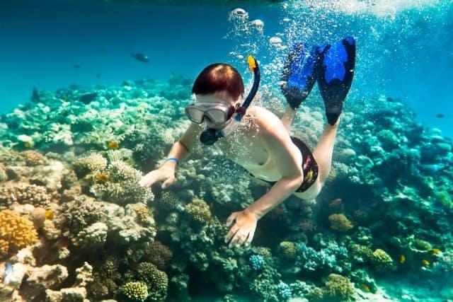 Lặn biển ngắm san hô ở Đảo Lý Sơn (Ảnh sưu tầm)