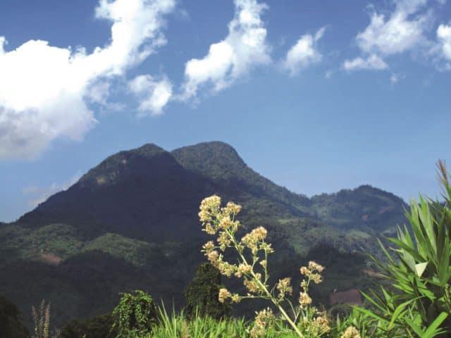 Núi Cà Đam (Ảnh sưu tầm)