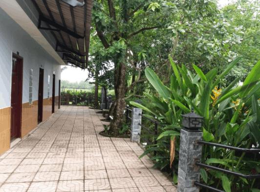 Tận hưởng không gian xanh mát tại Tanja Resort