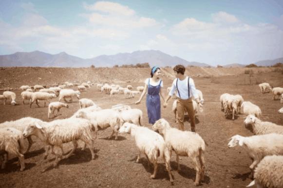 Trại cừu Vũng Tàu - Địa điểm checkin lý tưởng
