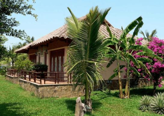 Xung quanh nhà nghỉ được bao phủ bởi nhiều cây xanh