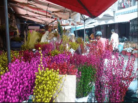 Sạp hoa ngày tết ngập tràn sắc màu
