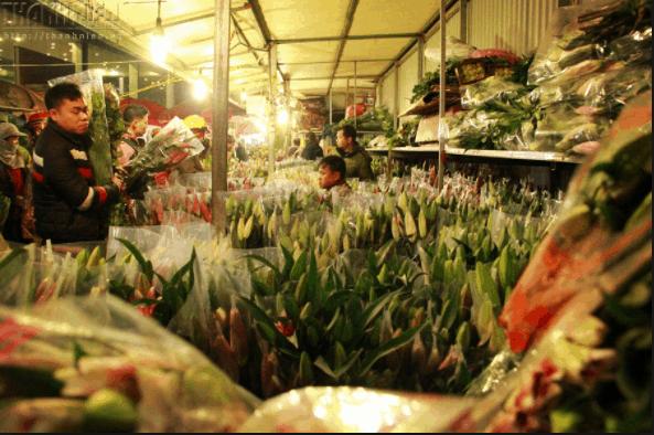 Hoa ly là loài hoa được ưa chuộng nhất dịp Tết