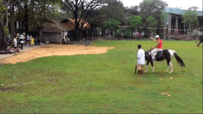 Cưỡi ngựa dạo quanh khu du lịch