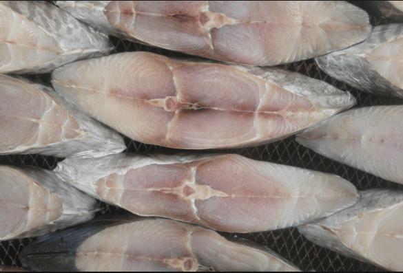 Cá thu một nắng - đặc sản Côn Đảo