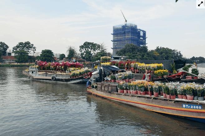 Bến Bình Đông trở nên thú vị với những chiếc thuyền chở đầy cây hoa