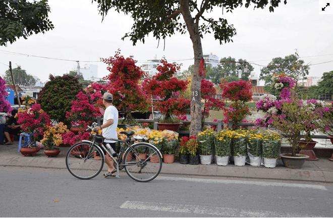 Ngập tràn sắc màu trên đường Bình Đông