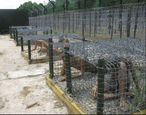 Hệ thống chuồng cọp nổi tiếng dã man của nhà tù