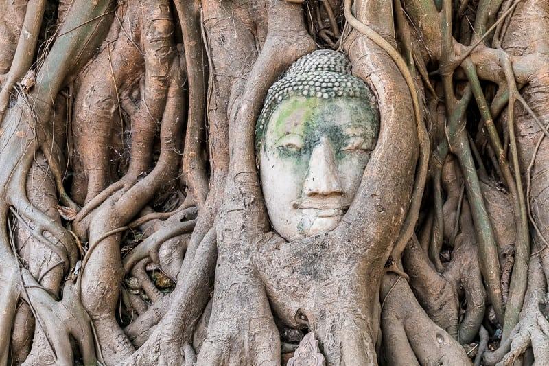 Bức tượng mặt Phật nổi tiếng