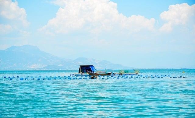Với nước biển xanh trong (Ảnh: Sưu tầm)