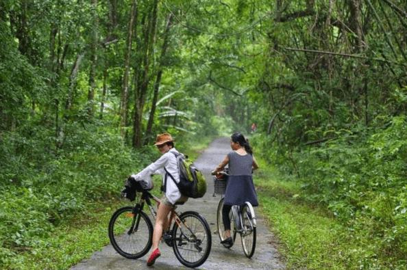 Đạp xe ngắm cảnh trong rùng quốc gia Nam Cát Tiên