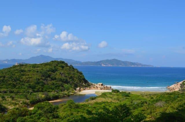Phần lớn cây trên đảo là các lùm bụi rậm hay các loại cỏ gai (Ảnh: Sưu tầm)