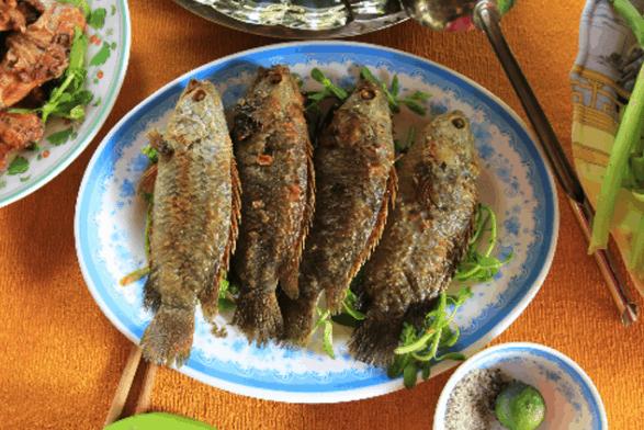 Thưởng thức món cá rô rừng tại Nam Cát Tiên