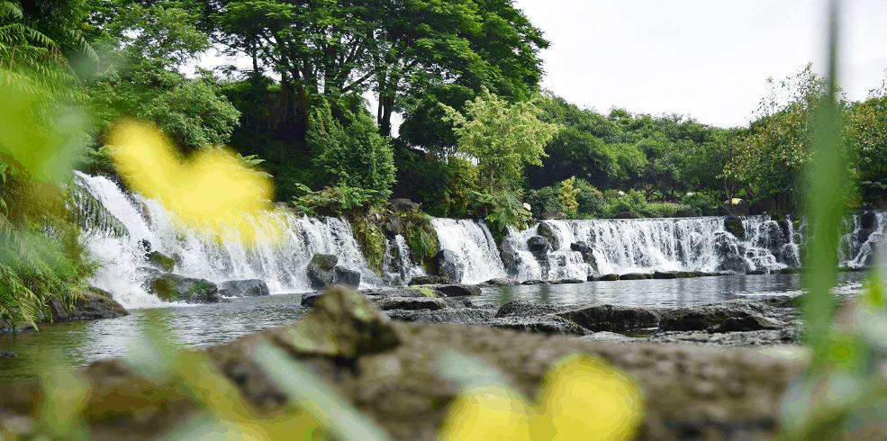 Vẻ đẹp thuần khiết của thiên nhiên tại thác Suối Mơ