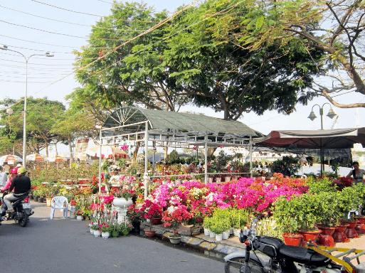 chợ hoa tết miền tây