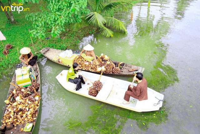 Tìm hiểu cuộc sống sông nước miền Tây tại KDL Bọ Cạp Vàng