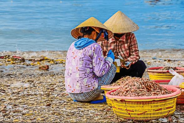 Những mẻ hải sản được bán luôn chứ không cần cân đo