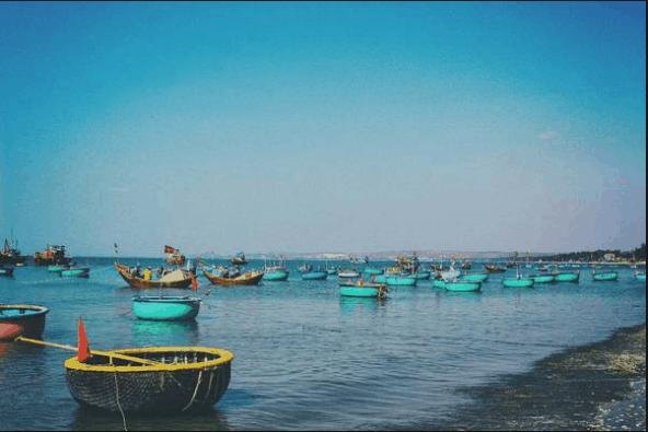 Những chiếc thuyền đánh cá nhiều màu sắc nằm trên mặt nước