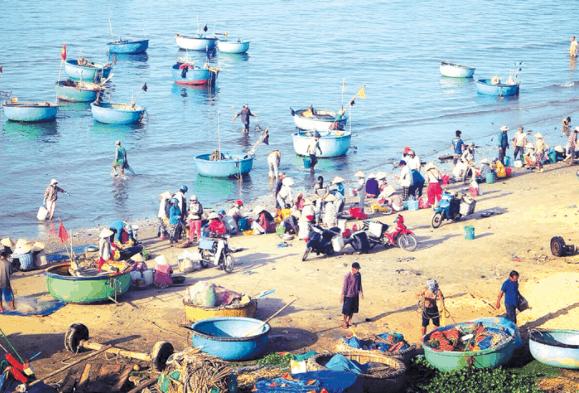 Khung cảnh người dân làng chài phân loại cá