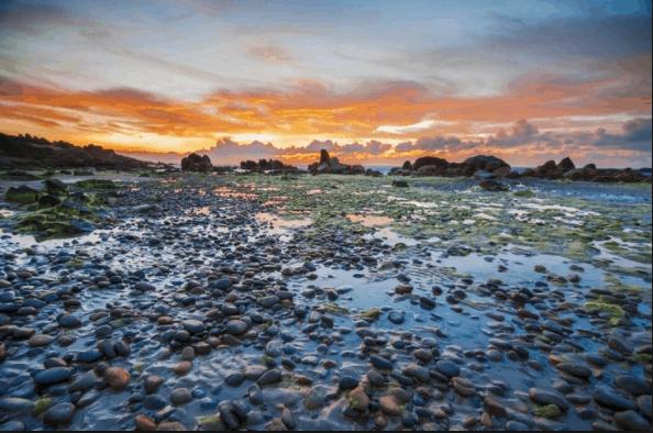 Vẻ đẹp hoang sơ trên biển Cổ Thạch