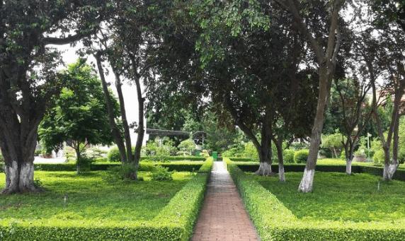 Sân vườn thoáng mát, không khí trong lành ở khu di tích