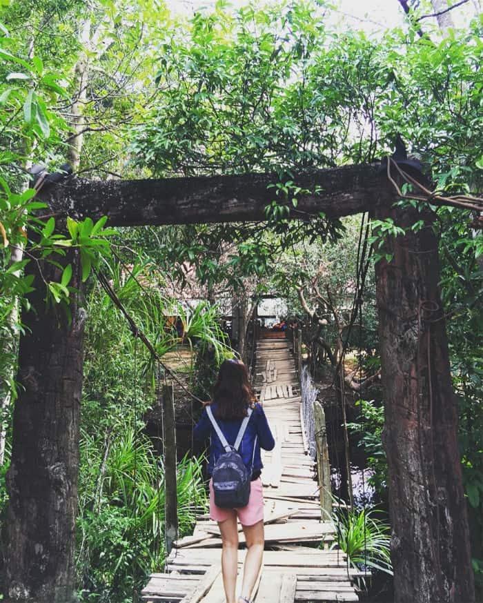 Cây cầu dẫn tới suối Đá Bàn