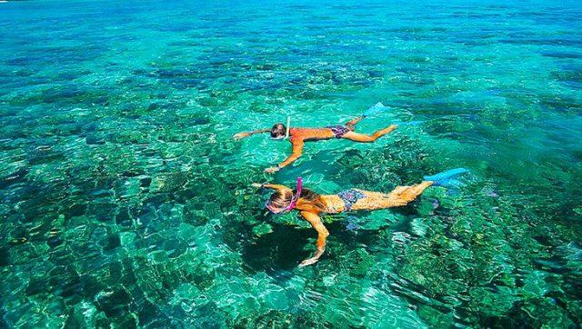 Hoạt động lặn biển ngắm san hô trên đảo (Ảnh ST)