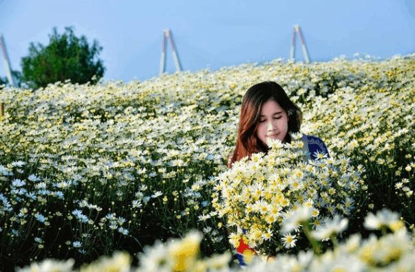Tới vườn hoa Sa Đéc để có được những bức ảnh đẹp