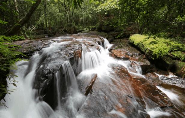 Suối Đá Bàn vào mùa mưa