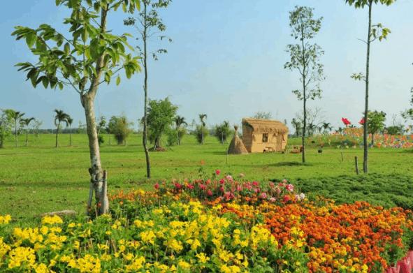 Không khí trong lành ở Làng Sen Việt Nam