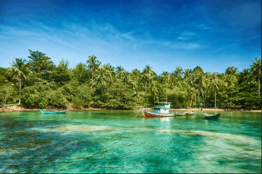 Nước biển xanh trong vắt thích hợp để ngắm san hô