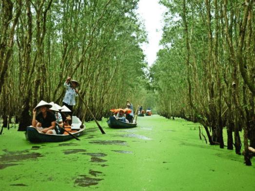 Đi thuyền dọc con kênh để vào đến rừng tràm