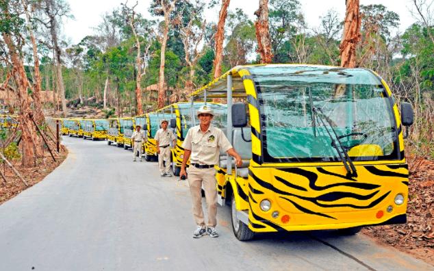 Đoàn xe đưa đón du khách tới tham quan vườn thú Vinpearl Safari