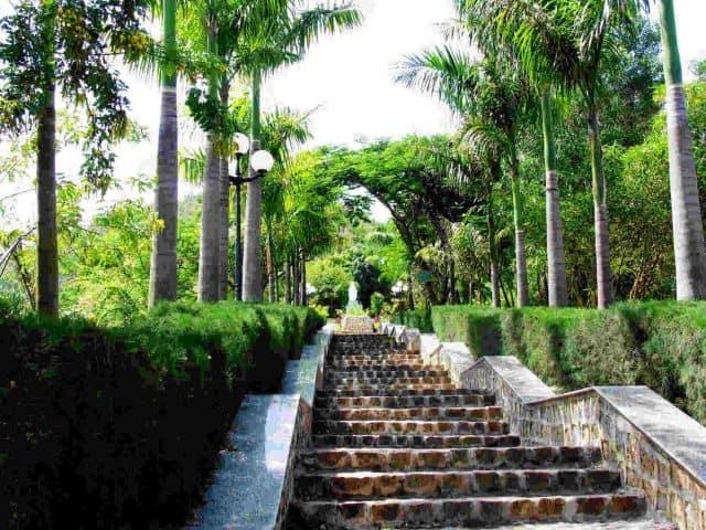 Con đường dẫn lên mộ Hàn Mặc Tử (Ảnh ST)