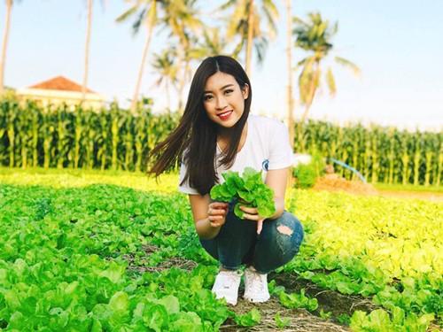 Hoa hậu Đỗ Mỹ Linh quảng bá hình ảnh du lịch Phú Yên tại Làng rau Ngọc Lãng (Ảnh ST)