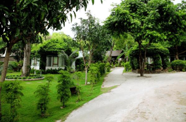 Mekong Space có không gian nghỉ dưỡng xanh mát